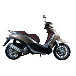 SPEEDPRO COBRA C5 Slip-on Piaggio Beverly 125 ie.